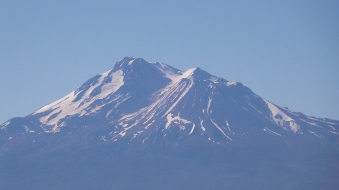 Mount Shasta view from field
