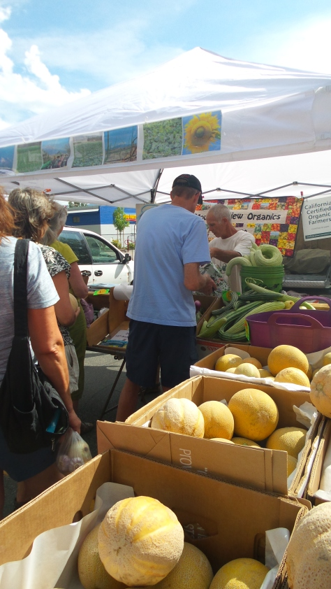Halona and Galia melons are a big hit at market!!!